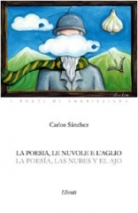 carlos sanchez,versi,libro,poesia,dinanimismo,argentina,italia
